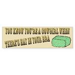 Cowgirl - Hay in your bra Bumper Sticker (10 pk)