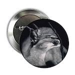 Caracal Button