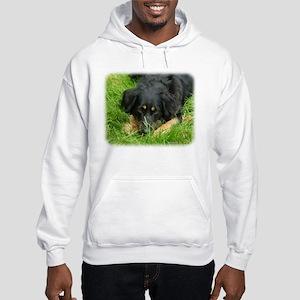 Hovawart 9W009D-064. Hooded Sweatshirt