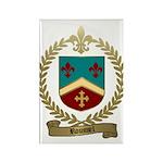 ROUSSEL Family Crest Rectangle Magnet