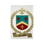 ROUSSEL Family Crest Rectangle Magnet (10 pack)