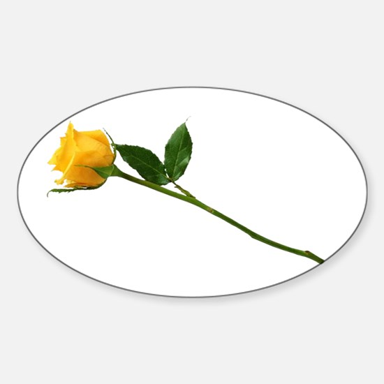 Yellow Rose Oval Decal