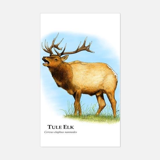 Tule Elk Rectangle Decal