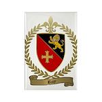 ROY Family Crest Rectangle Magnet (100 pack)