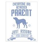 Chesapeake Bay Retriever Small Poster