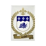SAVOY Family Crest Rectangle Magnet