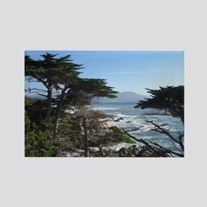 Cypress View Rectangle Magnet
