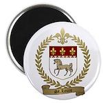 ST. LOUIS Family Crest Magnet