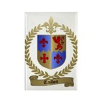 TAILLON Family Crest Rectangle Magnet