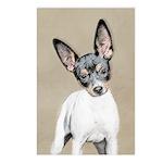 Rat Terrier Postcards (Package of 8)