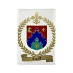 TARDIF Family Crest Rectangle Magnet (100 pack)