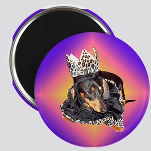 Queen Lily Dog Dachshunds Magnet