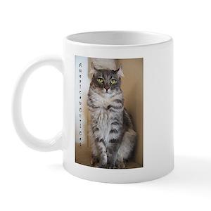 American Curl Tabby Cat