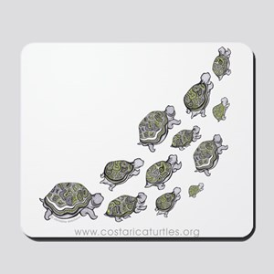 Turtle Illustration Mousepad