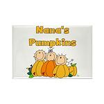 Nana's Pumpkins Rectangle Magnet (10 pack)