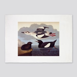 Black Guillemot Audubon 219 5'x7'Area Rug
