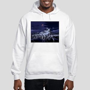 Terra Exorcism Surveillance: Hooded Sweatshirt