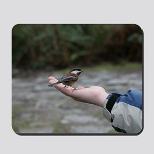 Chestnut-backed Chickadee Mousepad