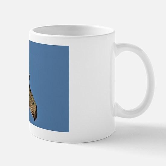 Red-Tailed Hawk Mug