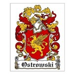 Ostrowski Family Crest Small Poster