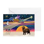 XmasStar/ Newfie Greeting Card