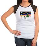 XmasSigns/BorderCollie 4 Women's Cap Sleeve T-Shir