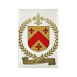 VINCENT Family Crest Rectangle Magnet (10 pack)