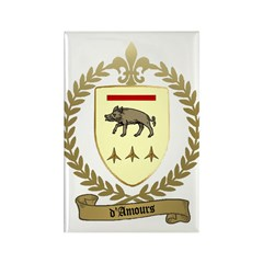 D'AMOURS Family Crest Rectangle Magnet