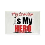 Lung Cancer Hero (Grandson) Rectangle Magnet (10 p