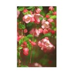 Pink Blossoms Mini Poster Print
