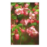 Pink Blossoms Postcards (Package of 8)
