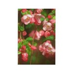 Pink Blossoms Rectangle Magnet (10 pack)