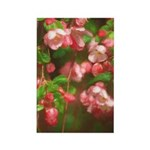 Pink Blossoms Rectangle Magnet (100 pack)