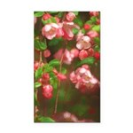 Pink Blossoms Rectangle Car Magnet