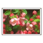 Pink Blossoms Banner