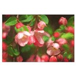 Pink Blossoms Large Poster