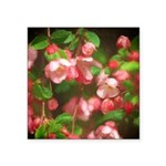 Pink Blossoms Square Sticker 3