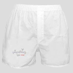 Leonard name molecule Boxer Shorts