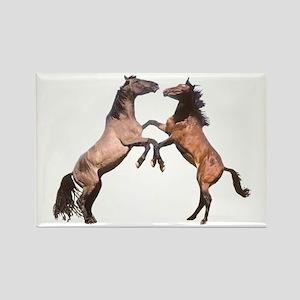 WILD HORSES Rectangle Magnet