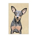 Miniature Pinscher Mini Poster Print