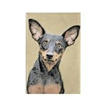 Miniature Pinscher Rectangle Magnet (100 pack)