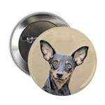 Miniature Pinscher 2.25