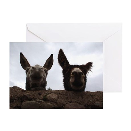 """""""Curious Donkeys"""" Blank Greeting Cards (Pack of 6)"""