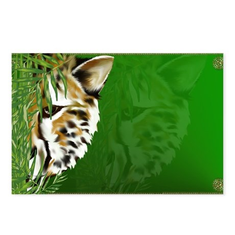 Cheetah Face Postcards (Package of 8)