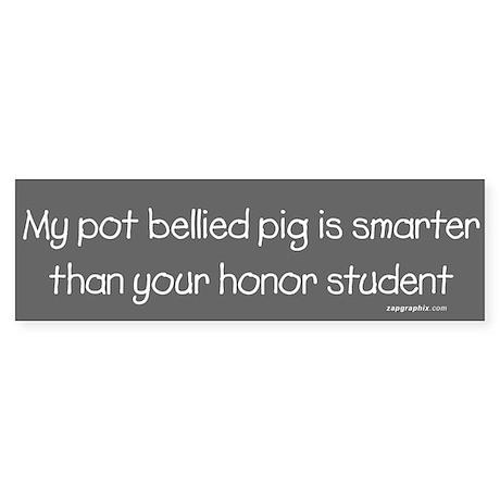 Pot Bellied Pig/Honor Student Bumper Sticker