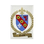 DUFOUR Family Crest Rectangle Magnet (10 pack)