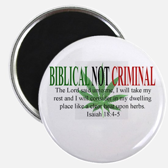 Biblical Not Criminal Magnet