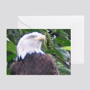 Eagle 2 Greeting Cards (Pk of 10)