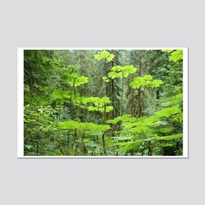 Northwest Rainforest Mini Poster Print