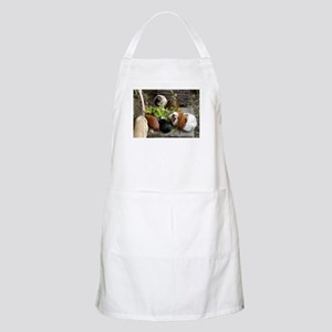 Guinea Pig Luncheon BBQ Apron